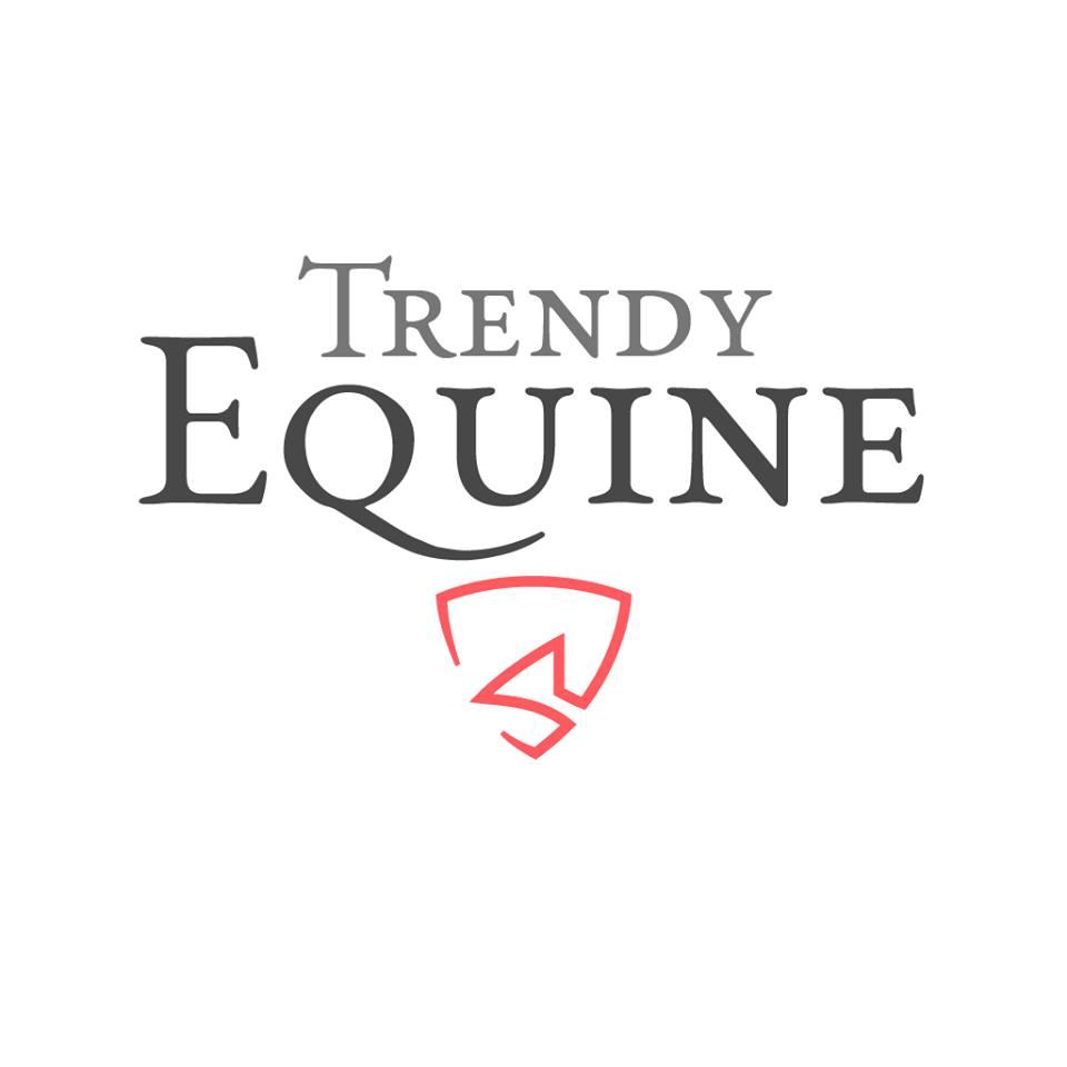 trendy equine