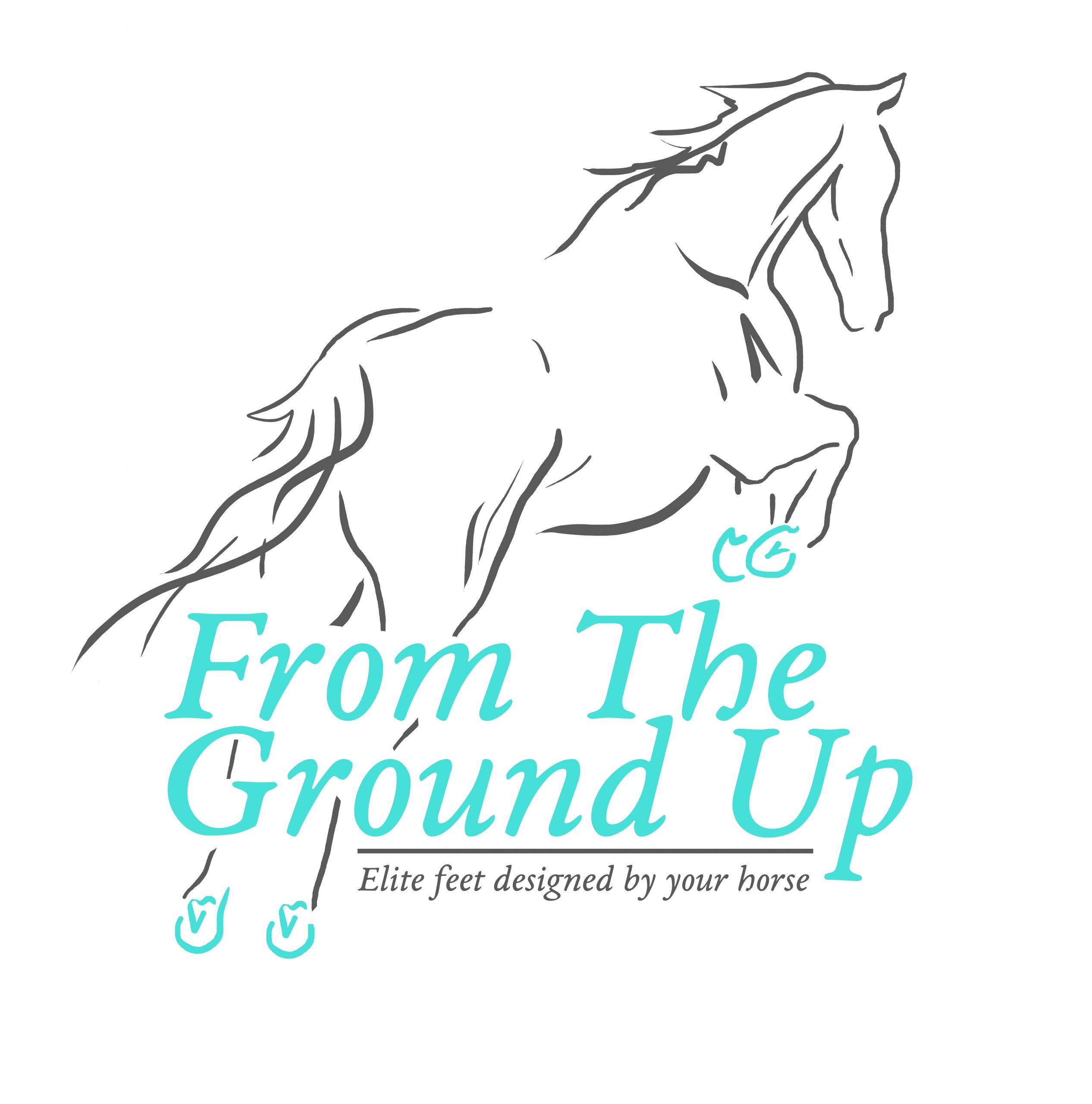 FTGUp logo